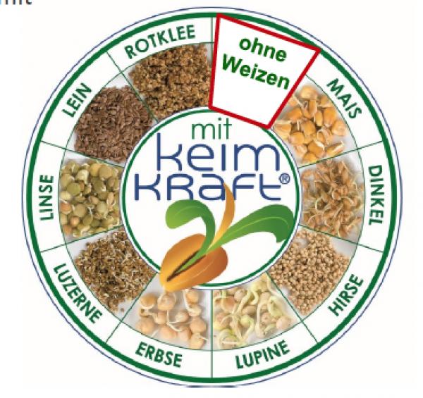 Global Vital 9Keimlingsmehl, ohne Weizen, 700 g